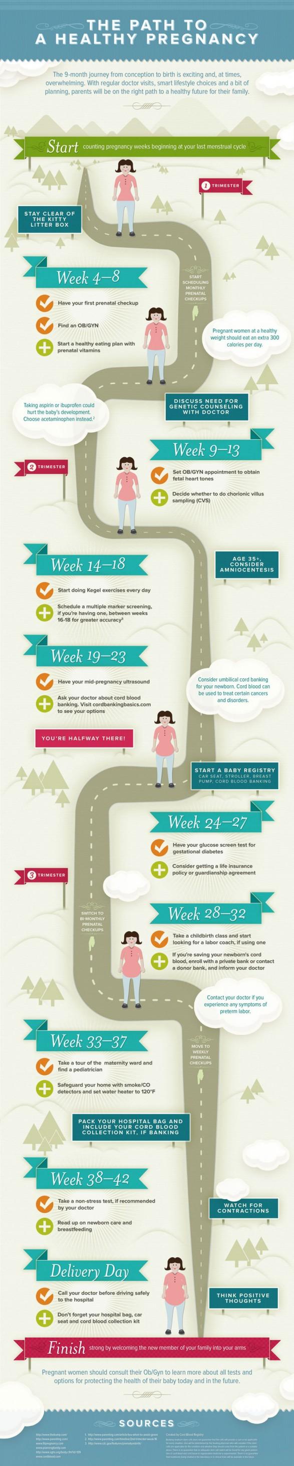 infographic-van-een-gezonde-zwangerschap